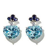 Jean Dousset 27.94ct Simulated Aquamarine Earrings