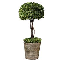 Uttermost Preserved Boxwood-Tree Topiary